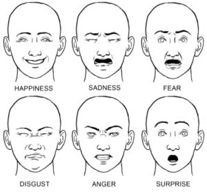 6 basic emotions